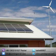 Turbina de viento horizontal / molino de viento / generadores de viento 5000W