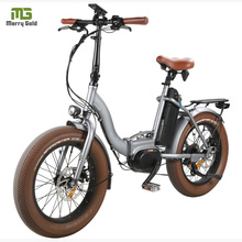 MID Drive Folding Fat Bike 20 Inch/ 48V Big Power Electric Bicycle