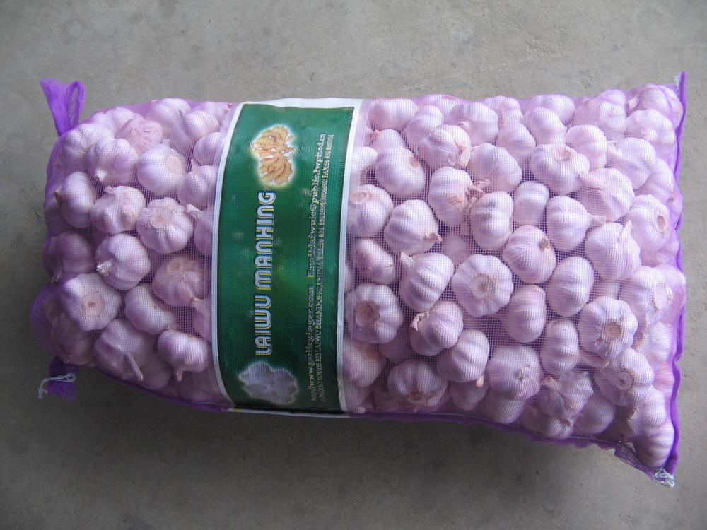 Mesh Bags Fresh Garlic