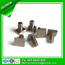 Square Head Stainless Steel T Bolt for Curtain