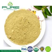 Poudre d'extrait de thé blanc organique de qualité supérieure