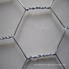 Hot-DIP Galvanized Chicken Wire Netting China Supplier