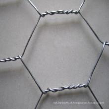 Fornecedor galvanizado Hot-DIP da China da rede de fio da galinha