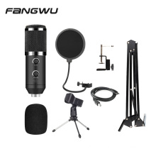 Factory USB ECHO BM800 Mic Microphone with Stand and Pop Filter
