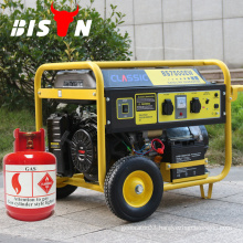 LPG Generator Silent For Home Use With Small MOQ And 1Year Warranty