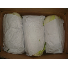 Nouveau chou frais de culture pour l'exportation (1.5kg)
