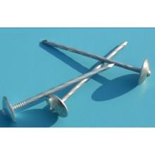 BWG9 BWG10 экспорта в страны Африки и Мьянме, Индонезии э-оцинкованная зонтик головные ногти