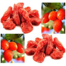 Zhongning Goji Berry China Herkunft, Super Goji Berry Ningxia Goji