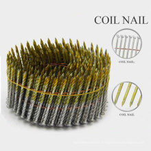 Professional High Quality Steel Cap Nails with Nice Price