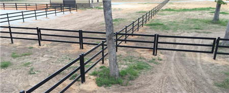 Horse Fence2