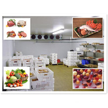 Heat Insulation Cold Room for Meat Storage