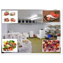 Sala fria da isolação térmica para o armazenamento da carne