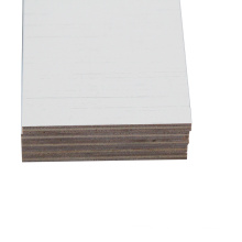 India market 12mm two face white melamine plywood for furniture