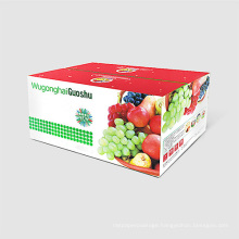 High Quality Paper Packaging Fruit Box