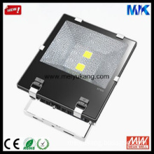 LED Outdoor Lighting IP65 MEAN WELL Epistar Led Flood Light 100W
