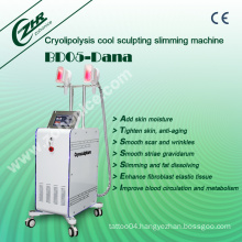 Cryolipolysis Fat Freezing Weight Loss Beauty Machine Bd05 - Dana