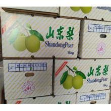 Großhandel chinesische Birnen exportieren nach Indonesien