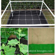 PP Plant Support Net Climbing Plant Support Netting