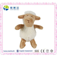 Macio, bonito, macio, cordeiro, sheep, pelúcia, brinquedo