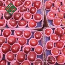 maçã gala chinesa maçã fresca para nova temporada