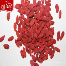 Производитель Оптовая цена новый травы экстракт барбари wolfberry плодоовощ