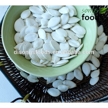 High Quality White Pumpkin Seeds Healthy Food Names