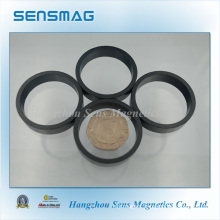 78.1° Radial Magnetized Permanent Bonded NdFeB Magnet