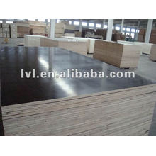 Film faced plywood size1250*2550mm