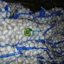 Alimentos Frescos de Alho Fresco 4.5cm-6.0cm