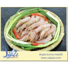 camarão rosa congelado IQF (Solenocera Meantho)