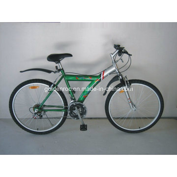 Mountainbike / Fahrrad (MS2603)