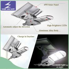 40W солнечный уличный свет с солнечной панелью, контроллером и батареей