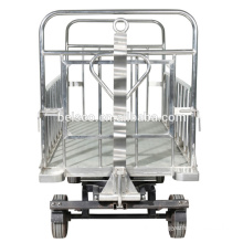 Standard airport luggage cart/airport baggage cart/foldable luggage cart
