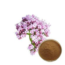 Free sample best price valerian extract