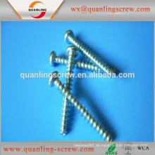 Großhandel China Produkte selbstschneidende Schraube