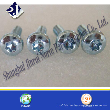 Steel Material Security T9 Torx Screw