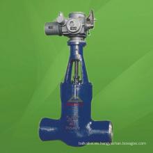 Válvula de compuerta motorizada con sello de presión (GAZ961Y)