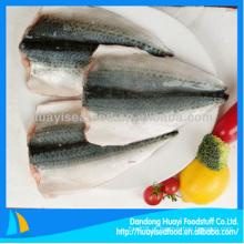 Filé de peixe de cavala congelado fresco com bom fornecedor a longo prazo
