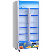 Коммерческий стеклянный дверной дисплей-холодильник
