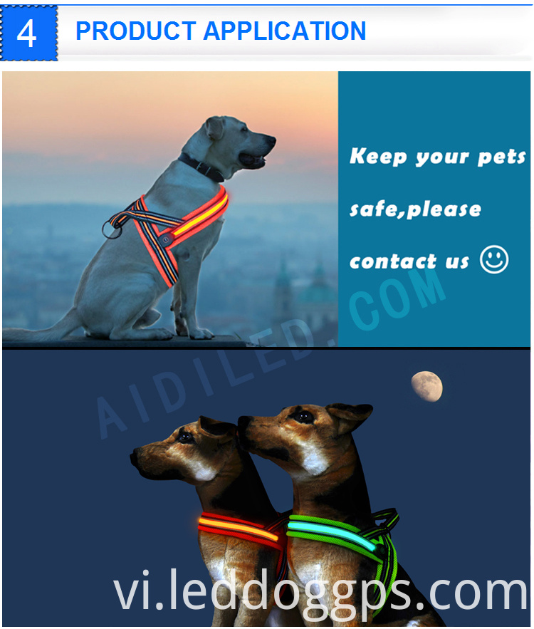 Nylon Light Up Dog Harness