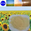 Hot Sale Ácido Aminoácido Orgânico Puro Aminoácido Hidrolisado Enzimático