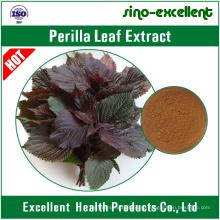 натуральный листьев Периллы, экстракт