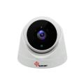 Infrarot 1080P IP Dome Kamera