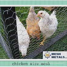 """1/2"""" Stainless Steel Hexagonal Mesh Chicken Wire"""