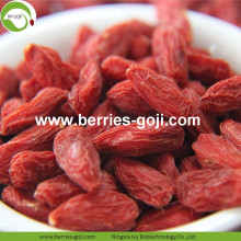 Fábrica Atacado Super Food Nutrition Malásia Goji Berries