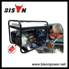 Bison China Zhejiang AVR For Generator Welder 6kva Alternator 220V AC