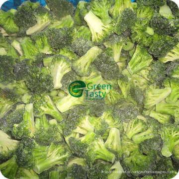 Floret de brócolis congelados IQF New Crop