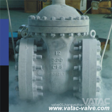 Extended Stem Low Temperature Cryogenic Gate Valve
