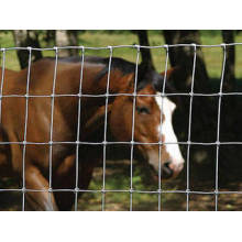 Clôture de terrain / clôture de vache / clôture de prairie