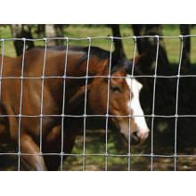 Cerca de campo / vedação de vaca / vedação de pastagem
